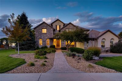 Highlands Ranch Single Family Home Active: 951 Courtland Place