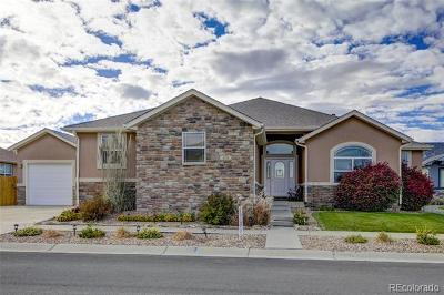 Brighton Single Family Home Active: 651 Branding Iron Court