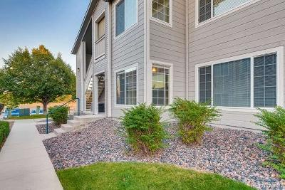 Highlands Ranch Condo/Townhouse Under Contract: 8312 Pebble Creek Way #104