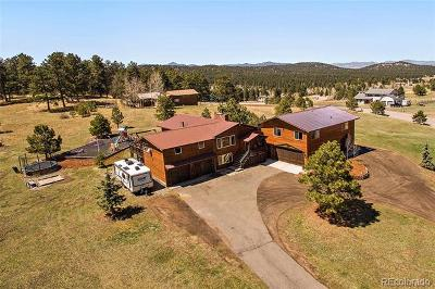 Evergreen Single Family Home Active: 9174 Armadillo Trail