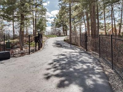 Franktown Single Family Home Under Contract: 7858 Kelty Trail