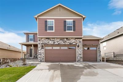 Castle Rock CO Single Family Home Active: $399,000