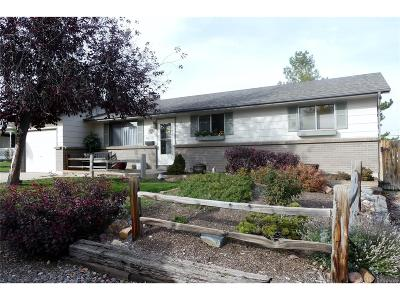 Denver Single Family Home Active: 4001 West Rutgers Place