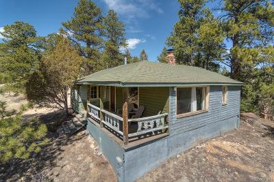 Pine Single Family Home Under Contract: 14961 Delta Lane