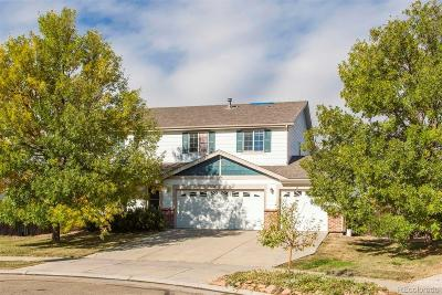 Erie Single Family Home Under Contract: 681 McAfee Court