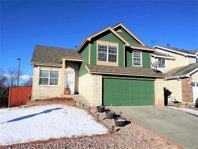 Denver Single Family Home Active: 4907 Fraser Way