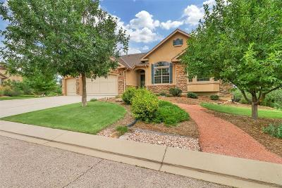 Flying Horse Single Family Home Under Contract: 1989 Diamond Creek Drive