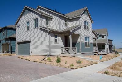 Littleton Single Family Home Under Contract: 9787 Bennett Peak Street