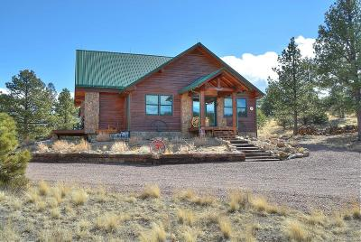 Single Family Home Active: 620 Skyview Road