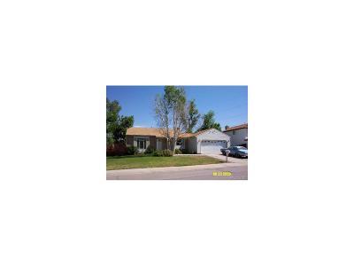 Centennial Single Family Home Under Contract: 17053 East Progress Circle