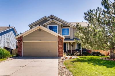 Parker Single Family Home Active: 10942 Parker Vista Way