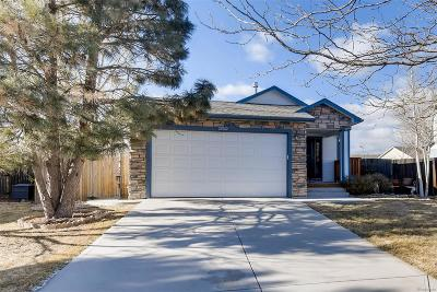 Aurora Single Family Home Under Contract: 22062 East Princeton Circle