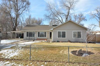 Wheat Ridge Single Family Home Active: 4695 Miller Street