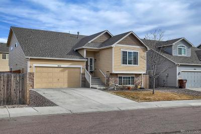 Colorado Springs Single Family Home Active: 4521 Sierra Rica Road