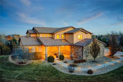 Longmont Single Family Home Active: 8712 Portico Lane