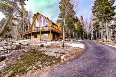 Conifer Single Family Home Under Contract: 31259 Timothys Trail