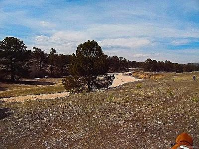 Douglas County Residential Lots & Land Active: 3211 Waverton Ranch Road