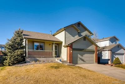 Arapahoe County Single Family Home Active: 4423 South Fundy Street