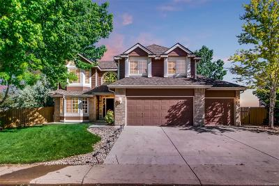 Superior Single Family Home Under Contract: 875 South Pitkin Avenue