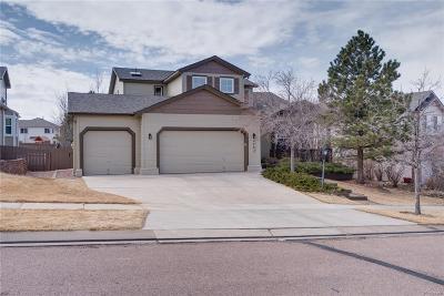 Pine Creek Single Family Home Under Contract: 3263 Greenmoor Court
