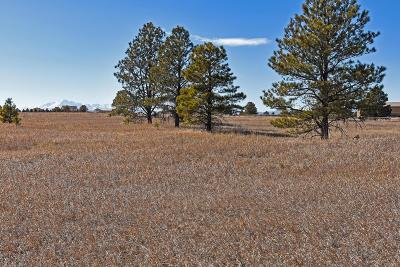 Monument CO Residential Lots & Land Active: $175,000