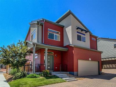 Castle Rock Single Family Home Under Contract: 4375 Vindaloo Drive