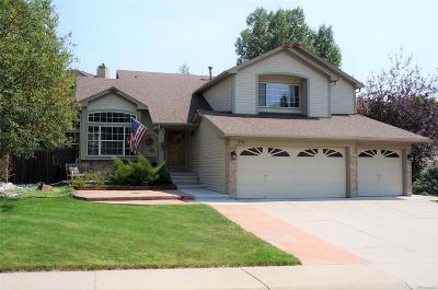 Lakewood Single Family Home Active: 2714 South Braun Way