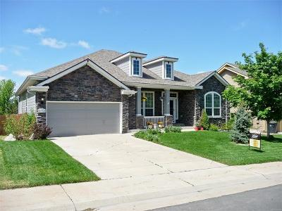 Single Family Home Sold: 1026 Purple Sage 1026 Ranch/1 Story