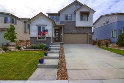 Single Family Home Under Contract: 11008 Salida Street