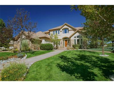 Highlands Ranch Single Family Home Active: 987 Fairchild Drive