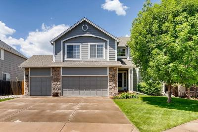 Castle Rock Single Family Home Active: 587 Pitkin Way