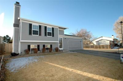 Parker CO Single Family Home Active: $335,000