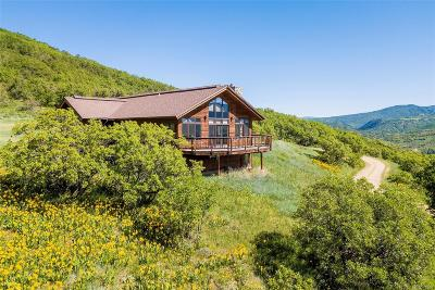 Steamboat Springs Single Family Home Active: 42155 Deer Road