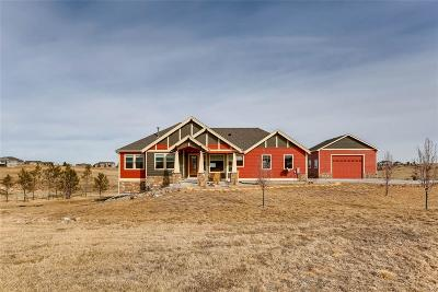 Elbert County Single Family Home Active: 650 Willow Run Circle