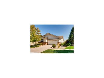 Arapahoe County Single Family Home Active: 21933 East Heritage Parkway