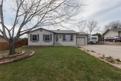 Arvada Single Family Home Active: 7965 Webster Way