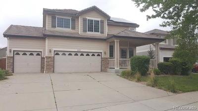 Brighton Single Family Home Active: 213 Straw Court