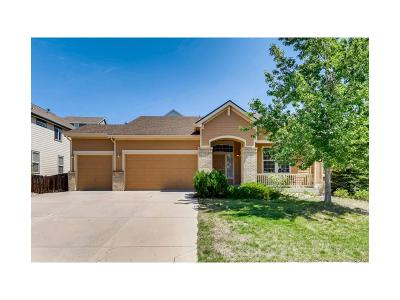 Crystal Valley, Crystal Valley Ranch Single Family Home Active: 4166 Astrion Court