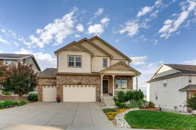 Castle Rock Single Family Home Active: 2717 Mashie Circle