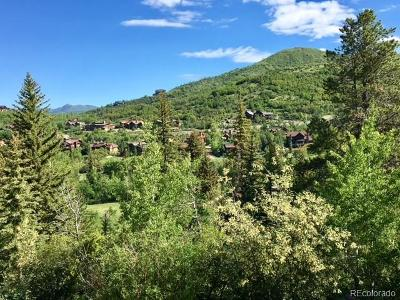 Residential Lots & Land Active: 1100 Steamboat Boulevard