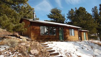 Park County Single Family Home Active: 370 Wagon Wheel Road