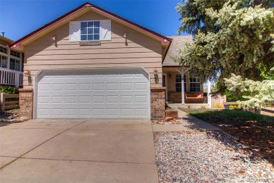Castle Rock Single Family Home Active: 4777 North Bearlily Way