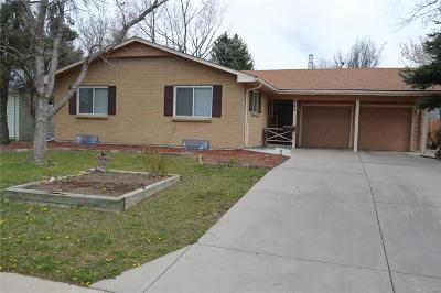 Denver Single Family Home Active: 846 South Jersey Street
