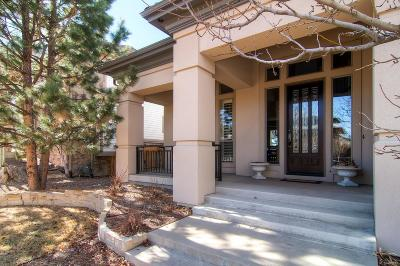Lone Tree Single Family Home Under Contract: 9515 South Shadow Hill Circle