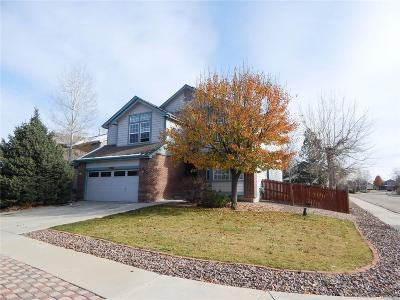 Longmont Single Family Home Active: 1432 Wildrose Drive