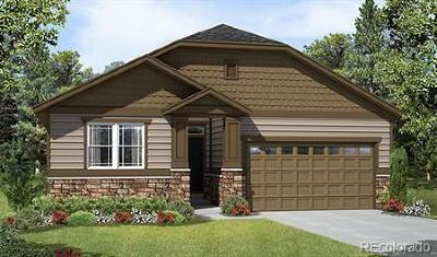 Aurora Single Family Home Active: 25104 East Byers Drive