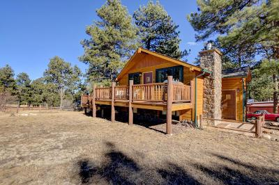 Evergreen Single Family Home Under Contract: 29397 Summit Road