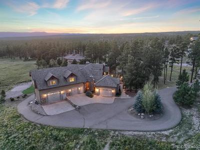 Colorado Springs Single Family Home Active: 4020 Foxchase Way