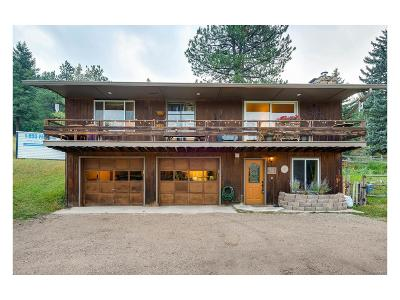 Evergreen Single Family Home Under Contract: 8221 South Blue Creek Road