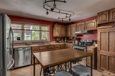 Steamboat Springs  Single Family Home Active: 131 Park Avenue